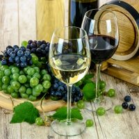 Gourmet ecological wines